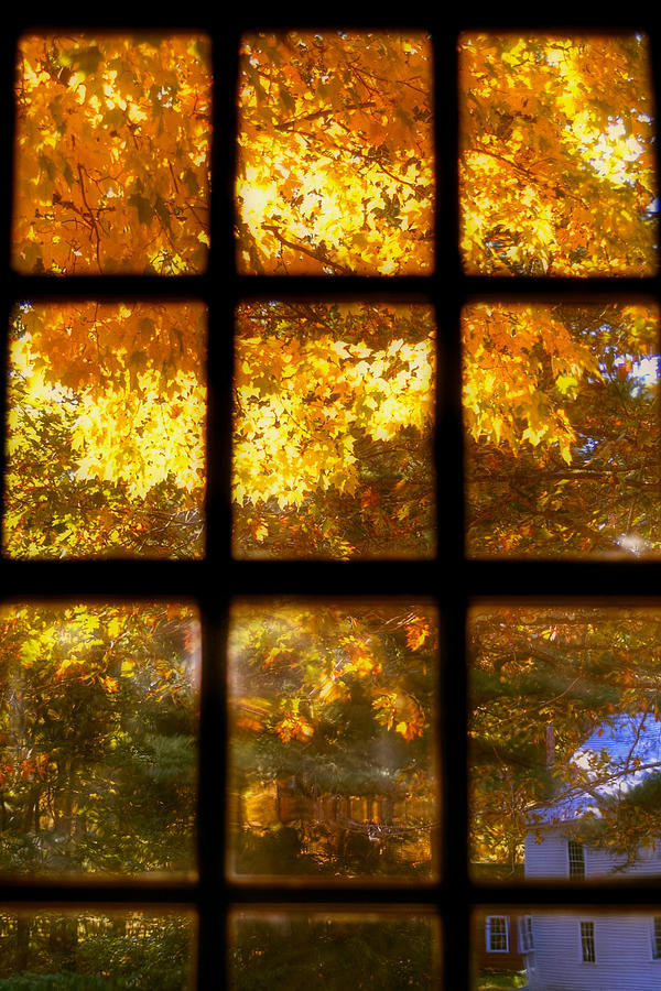 autumn-window